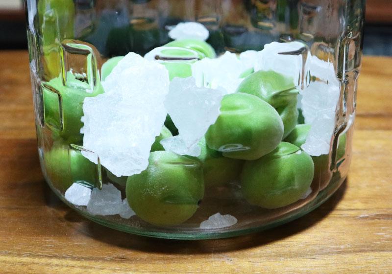 ウイスキーで造る梅酒 氷砂糖と梅を交互に入れる1